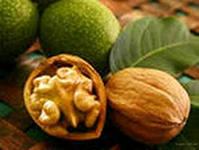 Грецкий орех - праздник ума