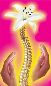 позвоночник - ущемление спинномозговых нервов