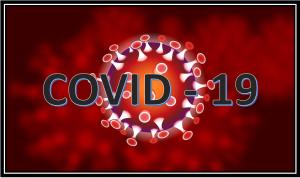 Выводы человека, переболевшего СOVID-19